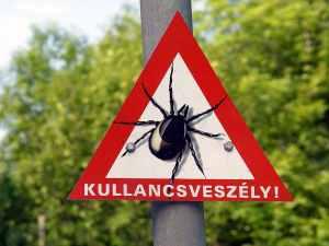 veszélyes?